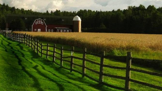 """Държавен фонд """"Земеделие"""" приема заявления за зимни пръскания"""