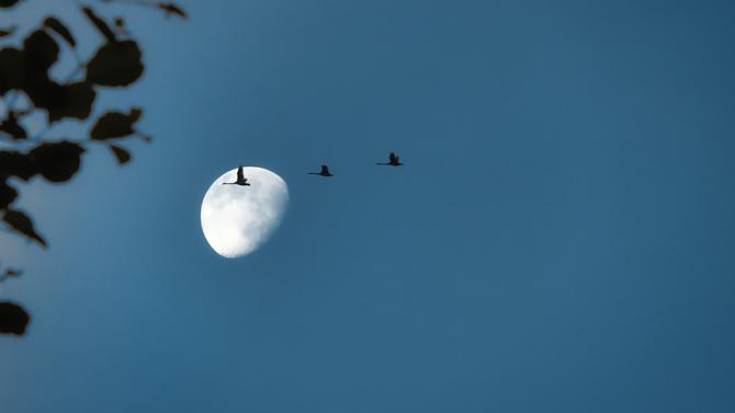 НАСА: На Луната трябва да се изгради ядрена енергосистема