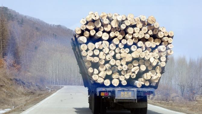 Мъж е починал при преобръщане на камион с дървесина в Смолянско