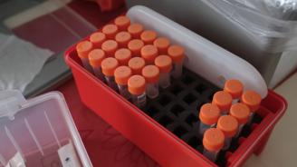 Проф. Нели Корсун: PCR не трябва да се прави веднага след контакт на даден човек с предполагаемо болен