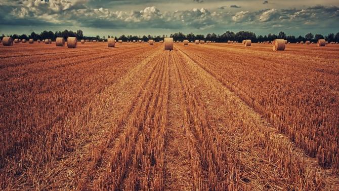 Над 13 млн. лева компенсации за пострадалите от сушата области