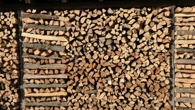 Незаконно добити дърва са намерени при специализирана полицейска операция в