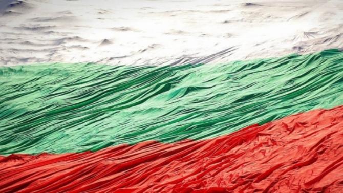 Съдят 22-годишен от Берковица, опетнил знамето на Република България