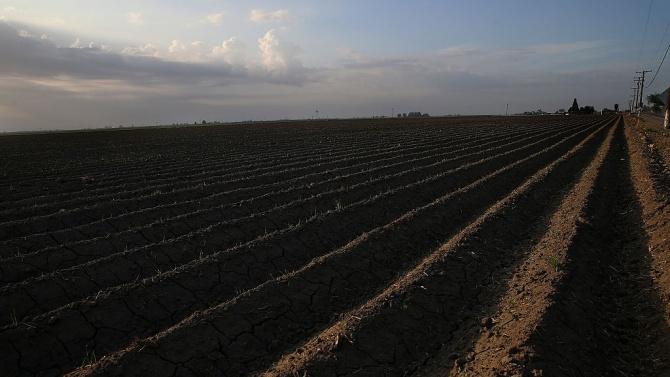 """Фонд """"Земеделие""""обеща да обяви на кого опрощава заеми"""