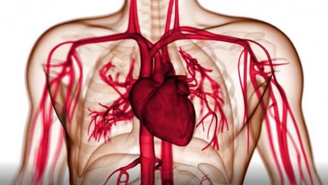 Код здраве: Определете своя риск да получите инфаркт, инсулт или друг тежък сърдечно-съдов инцидент с този лесен тест