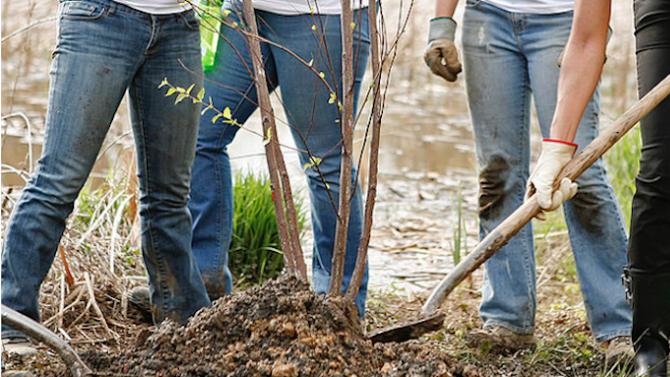 В Тракийския университет засадиха 250 дръвчета