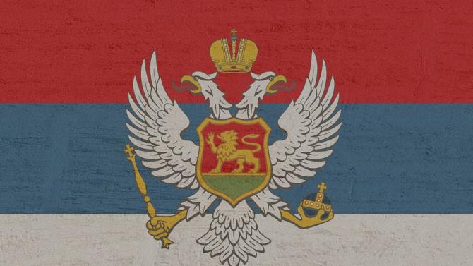 Сръбският посланик в Черна гора Владимир Божович е обявен за
