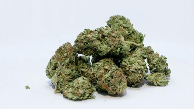 Дилър на наркотици е задържан по време на акция