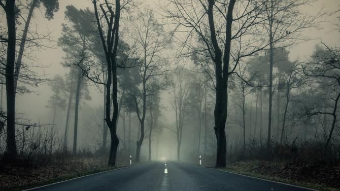 Поради мъгла видимостта в Търговище е ограничена до 150 метра.