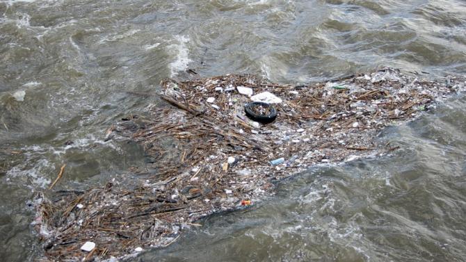 Екоексперти провериха сигнал за замърсяване на водите на река Провадийска