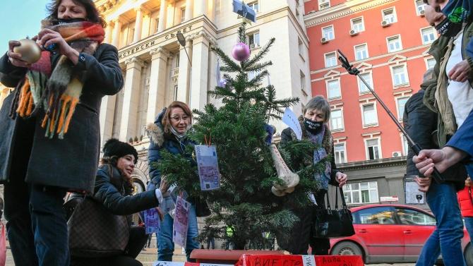 Протест пред Министерски съвет, коледна елха се появи под прозорците на властта