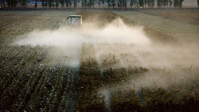 Китай е обвинен, че е принудил 570 000 души в Синцзян да берат памук