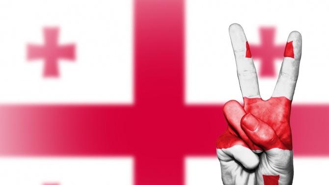 В Грузия е разработен законопроект, според който една партия с лидер чужденец не може да участва в избори