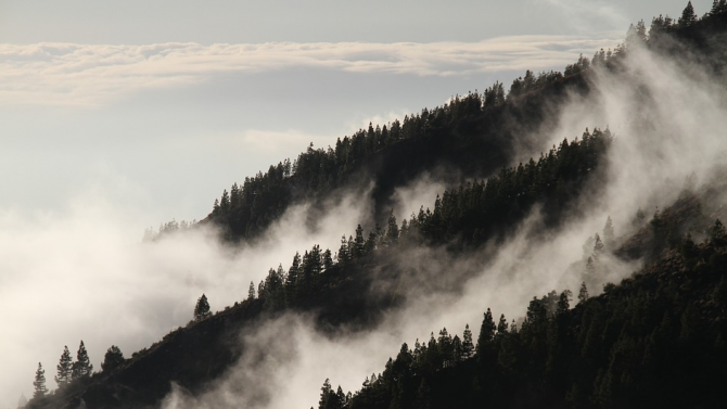 Облачно и мъгливо ще е времето утре