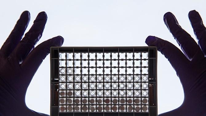 Учени се тревожат от нови щамове на COVID-19, устойчиви на терапии с антитела