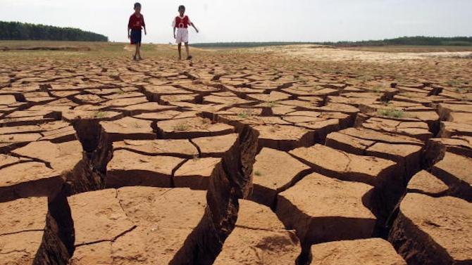 16 млн. лева компенсации бяха преведени на земеделските стопани заради сушата