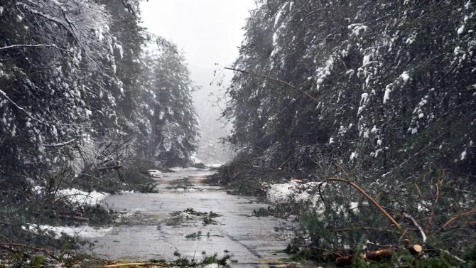 Пътят Монтана-София през Петрохан още е затворен, без ток са отделни селища в Монтанско