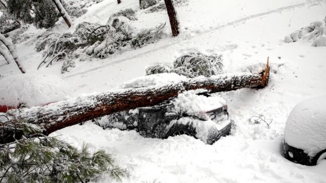 Рекордни студове сковаха Испания след снежната буря
