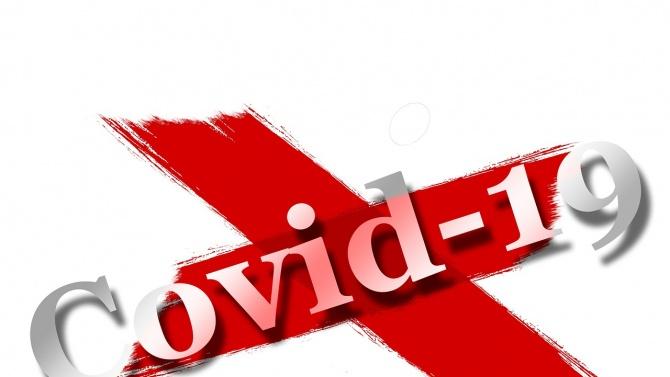 Най-неуместните думи в Германия за 2020 г. са COVID и термин за миграцията