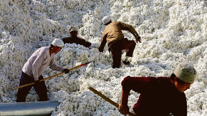 САЩ забраняват вноса на всички продукти от памук и домати от китайския район Синдзян
