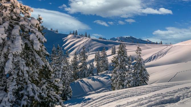 40 сантиметра сняг има в планината в Габровско