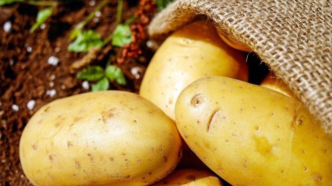 """БАБХ проверява продават ли се наистина германски """"български"""" картофи"""
