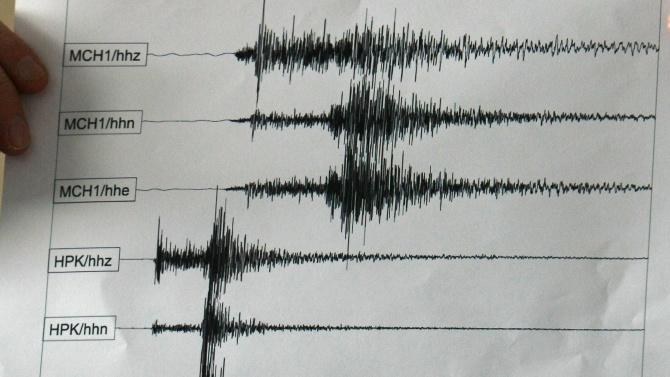 Земетресение от 2.3 в близост до село Сърница