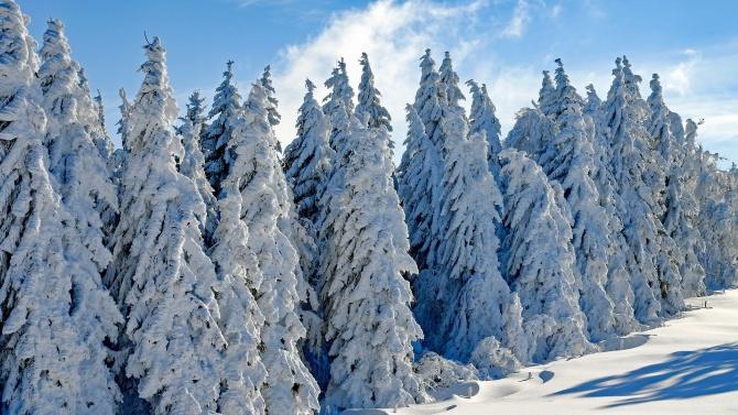 45 см сняг по високите части на Източните Родопи