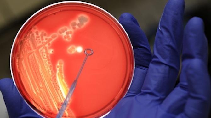 Откриха патоген от 2010 г., който съвпада 92,6 процента с вируса на COVID-19