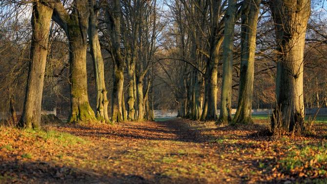 Природен парк предлага маршрути за осиновяване