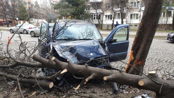 """Джип събори дървета на булевард """"Гоце Делчев"""" в София"""