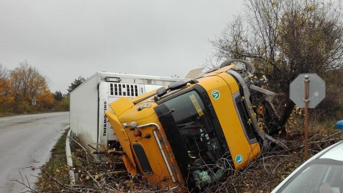 Камион се обърна и разля течен тор край Белене