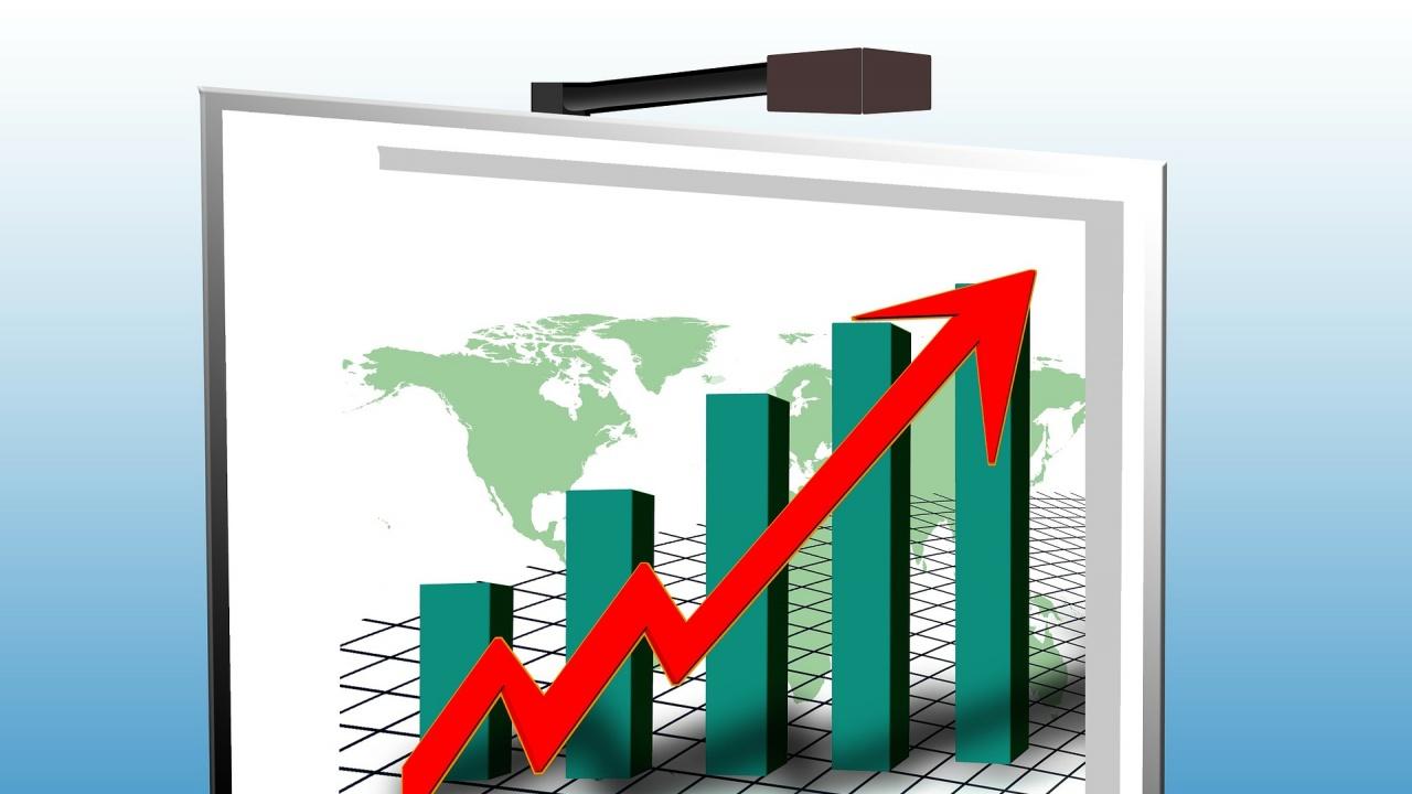 По предварителни данни на НСИ инфлацията за януари е 0.2 на сто