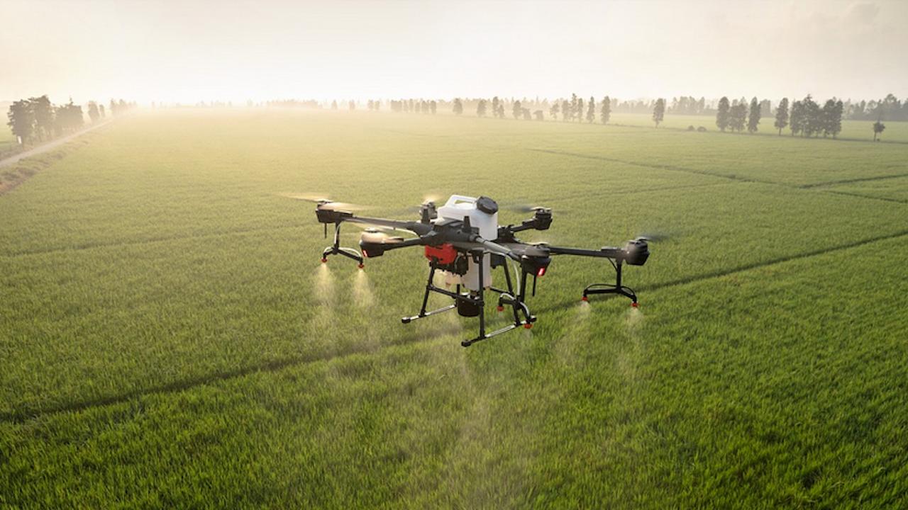 Земеделски производители ще се обучават в Русе да боравят с препарати за растителна защита