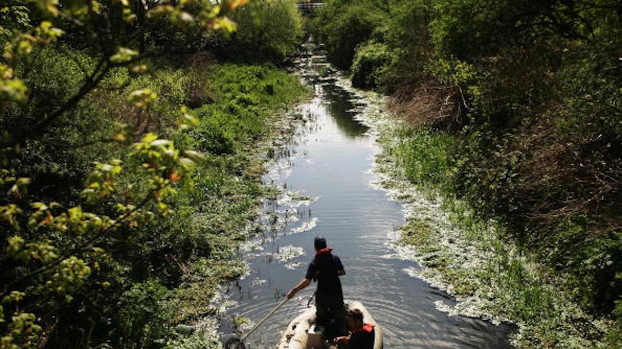 Ново плаващо сметище се е образувало в река Струма