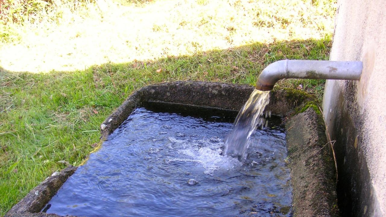 Бедствено положение в с.Брестовица заради проблем с водата