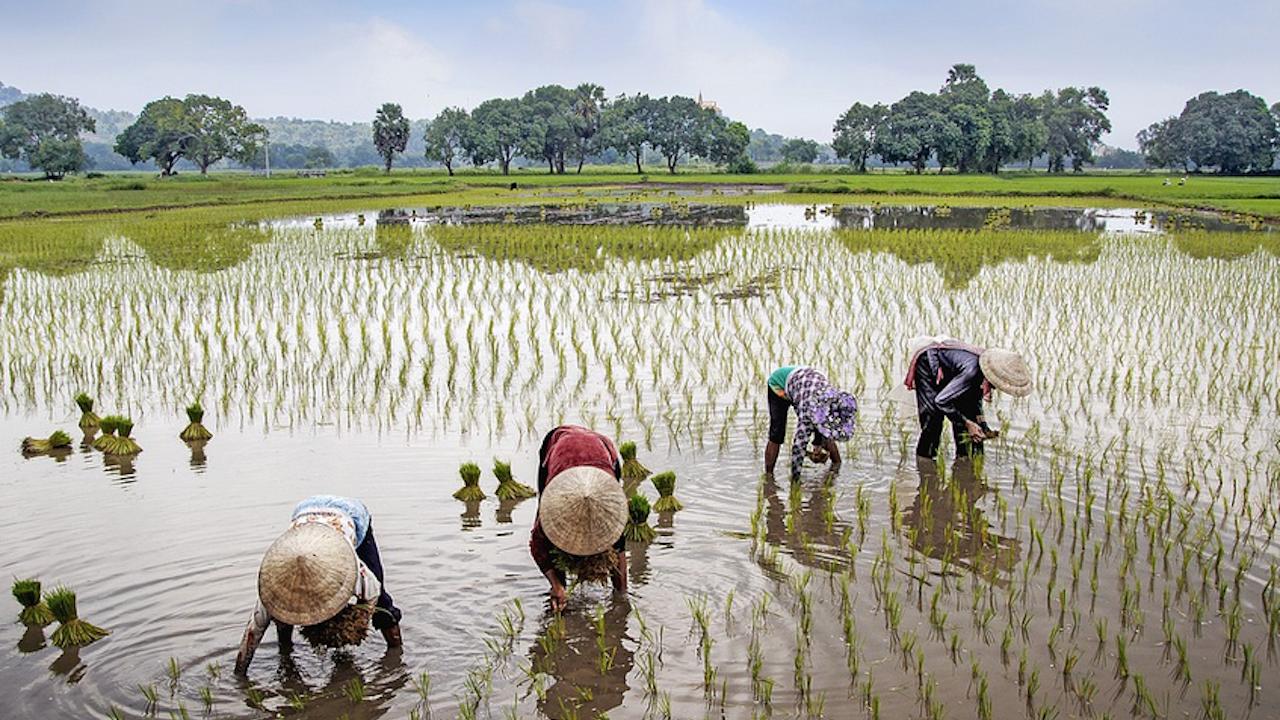 Правителството предлага ратифициране на Споразумението за защита на инвестициите между ЕС и Виетнам