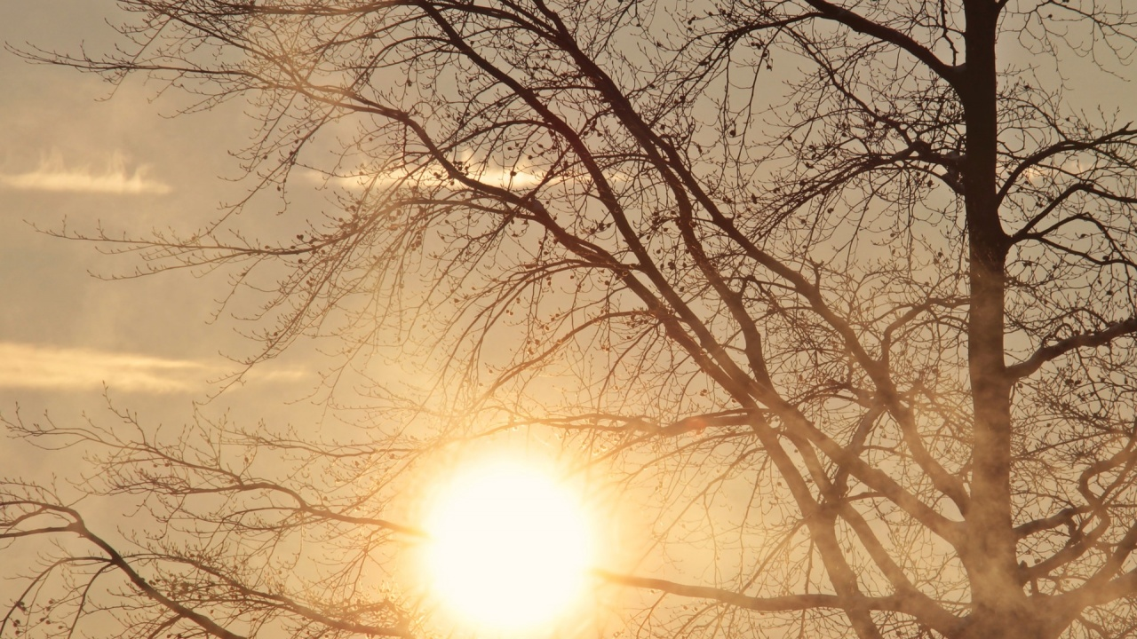 Високи температури и утре