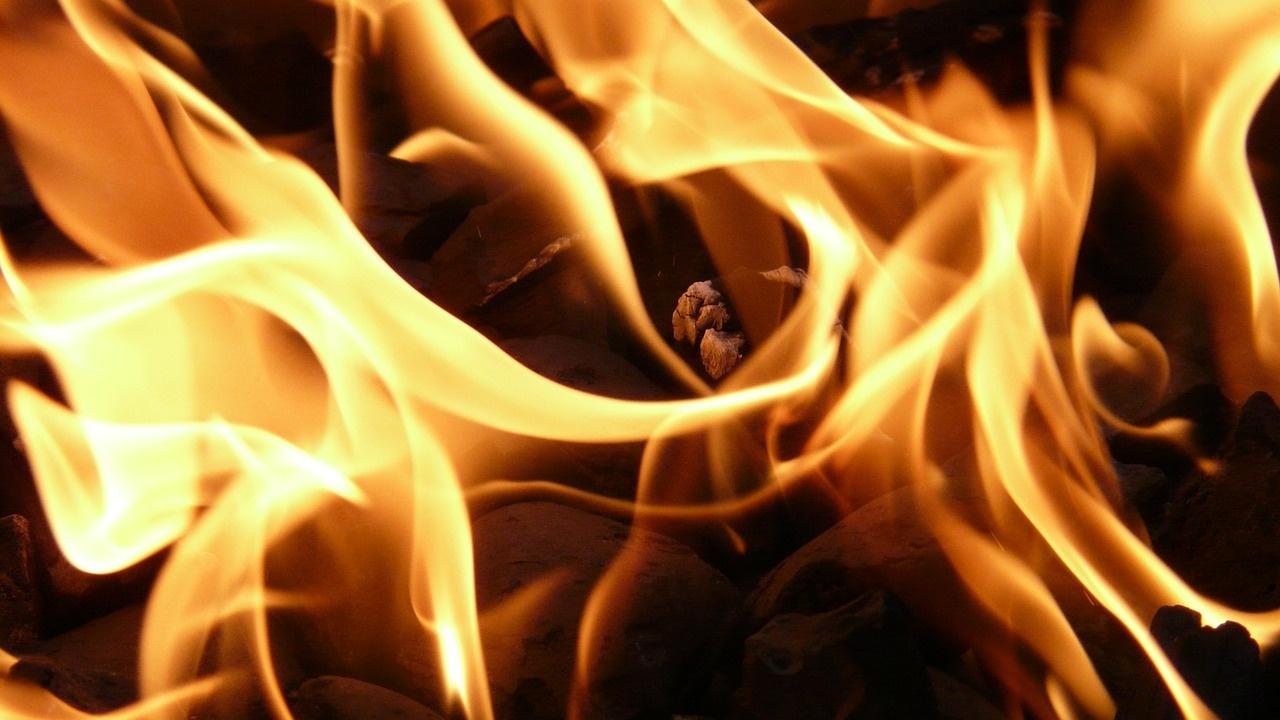 33 пожара са възникнали в Кюстендилска област от началото на годината