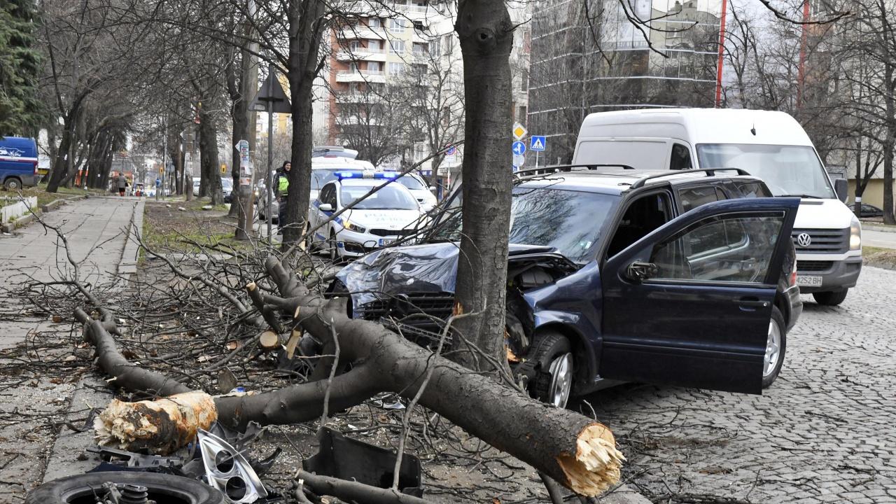20-годишен загина при тежка катастрофа във Врачанско