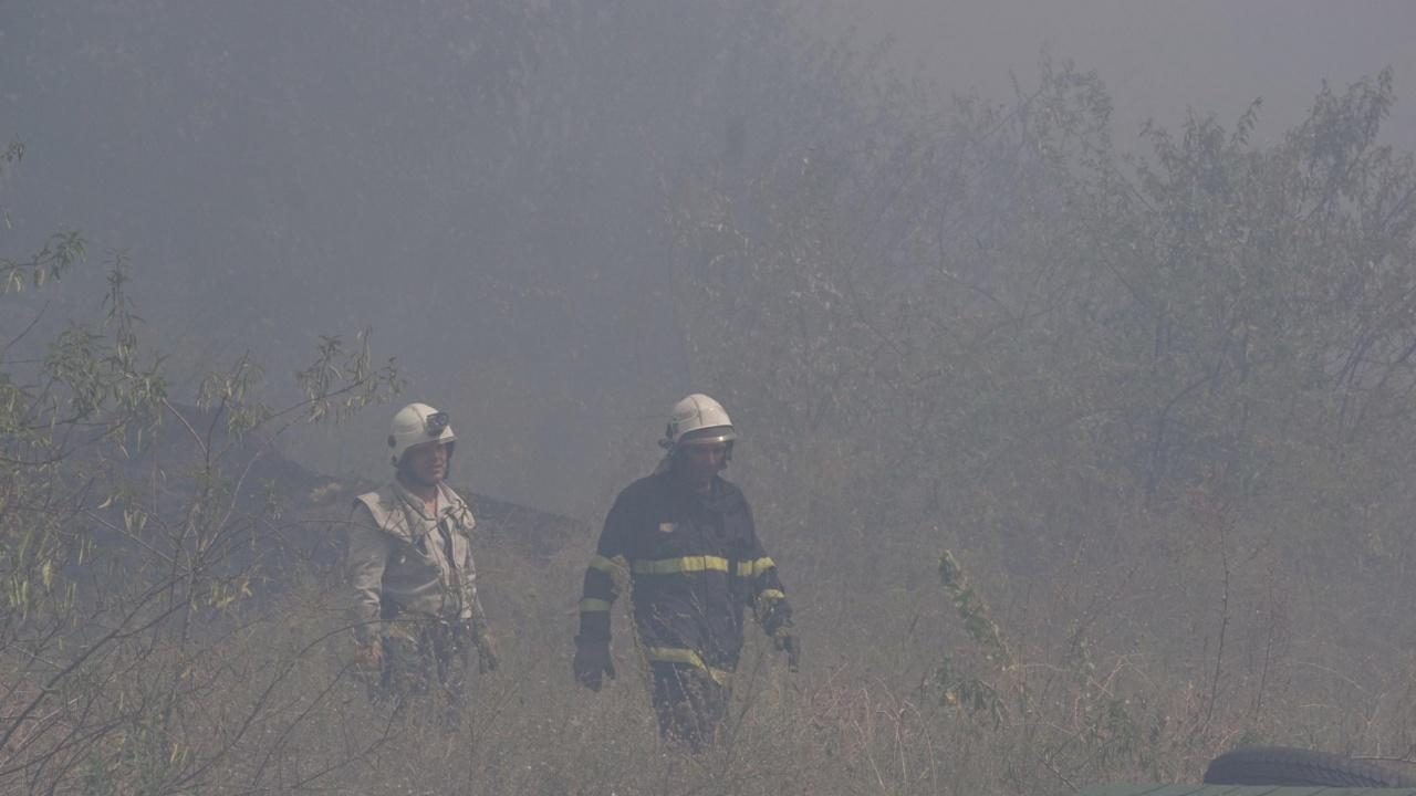 Около 800 декара сухи треви и храсти са изгорели в Монтанско