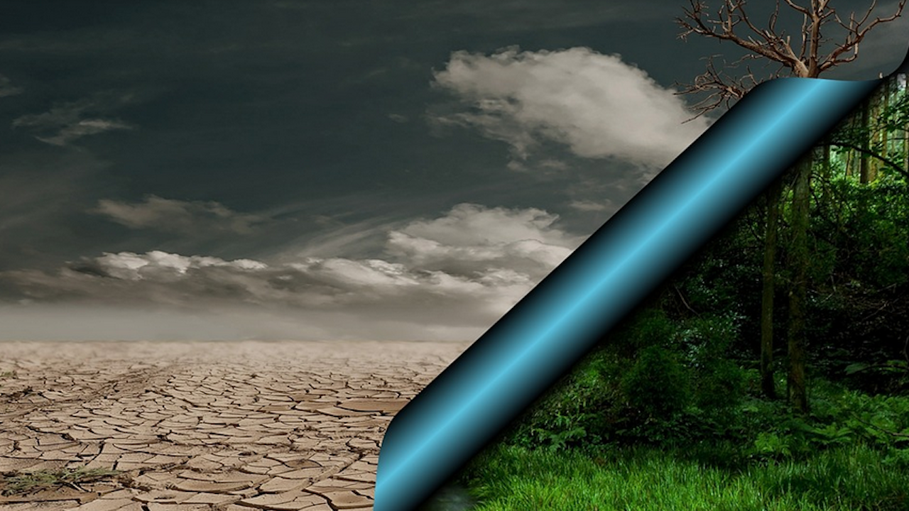 За 70% от българите мерките срещу климатичните промени трябва да са приоритет в управлението