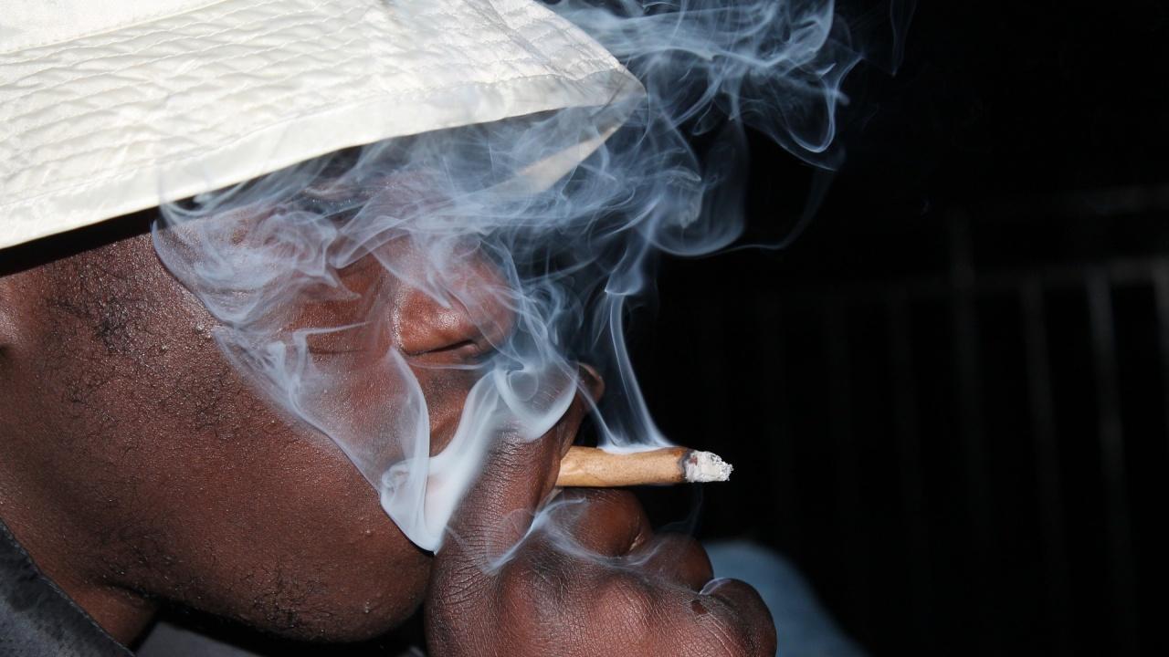 В Мексико одобриха употребата на марихуана за развлекателни цели