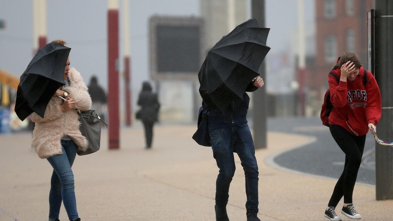 Буря взе жертва в Белгия