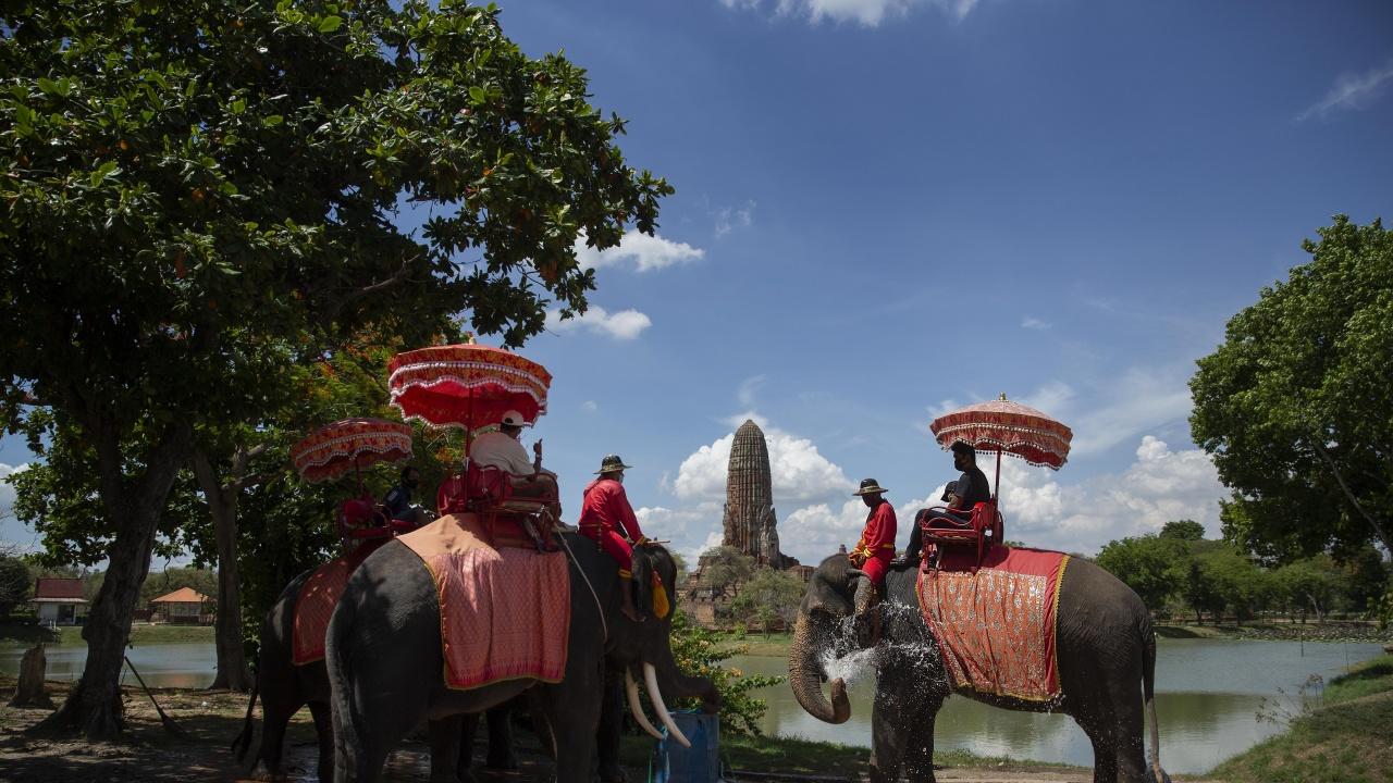 Тайланд отбелязва Деня на слона с надеждата туристите да се завърнат