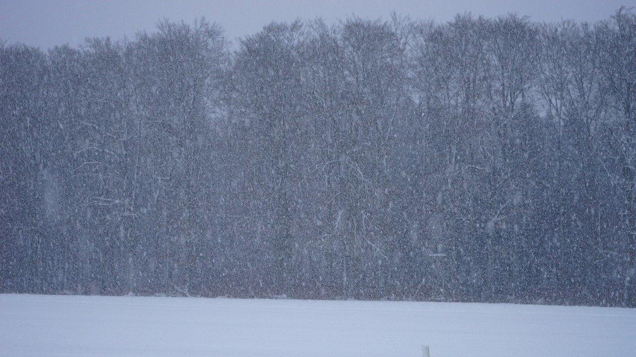 Две хиляди отменени полета в Денвър заради снежна буря