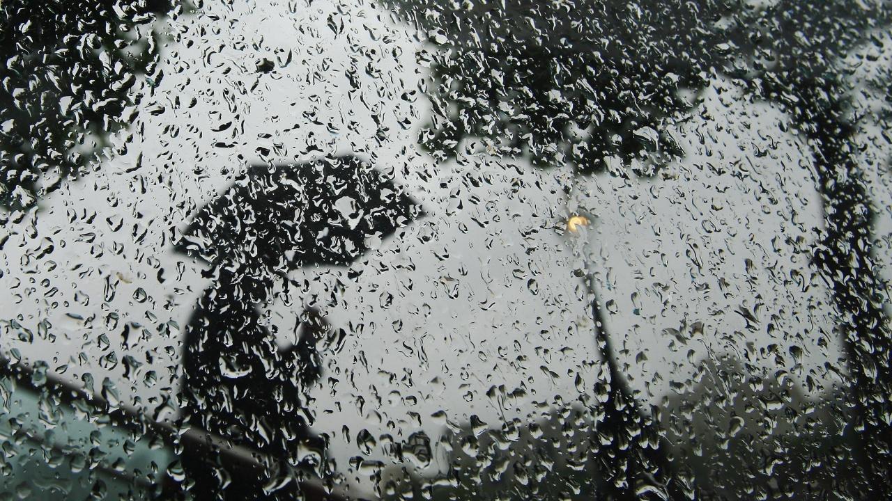 Жълт код за значителни валежи и силен вятърутре
