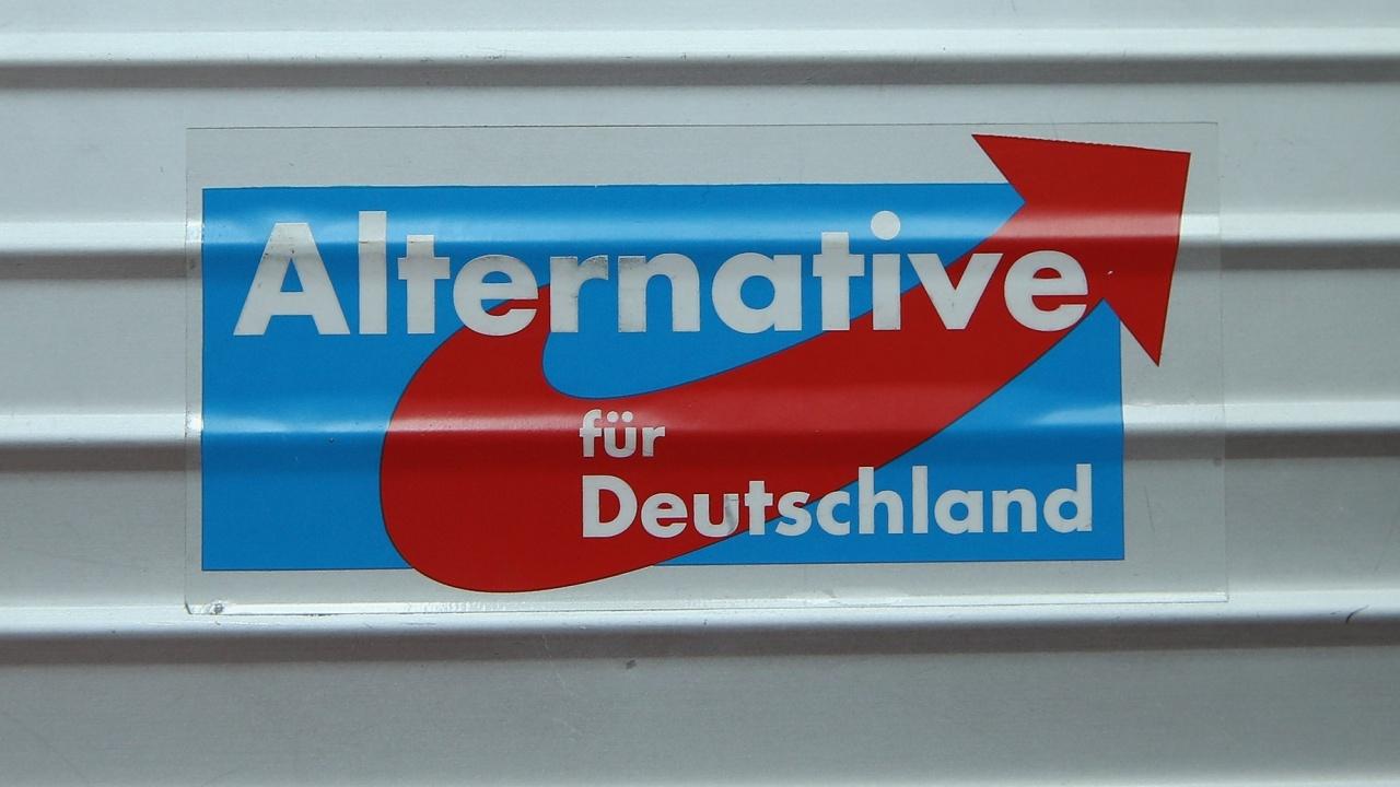 """Спада подкрепата за крайнодясната """"Алтернатива за Германия"""""""