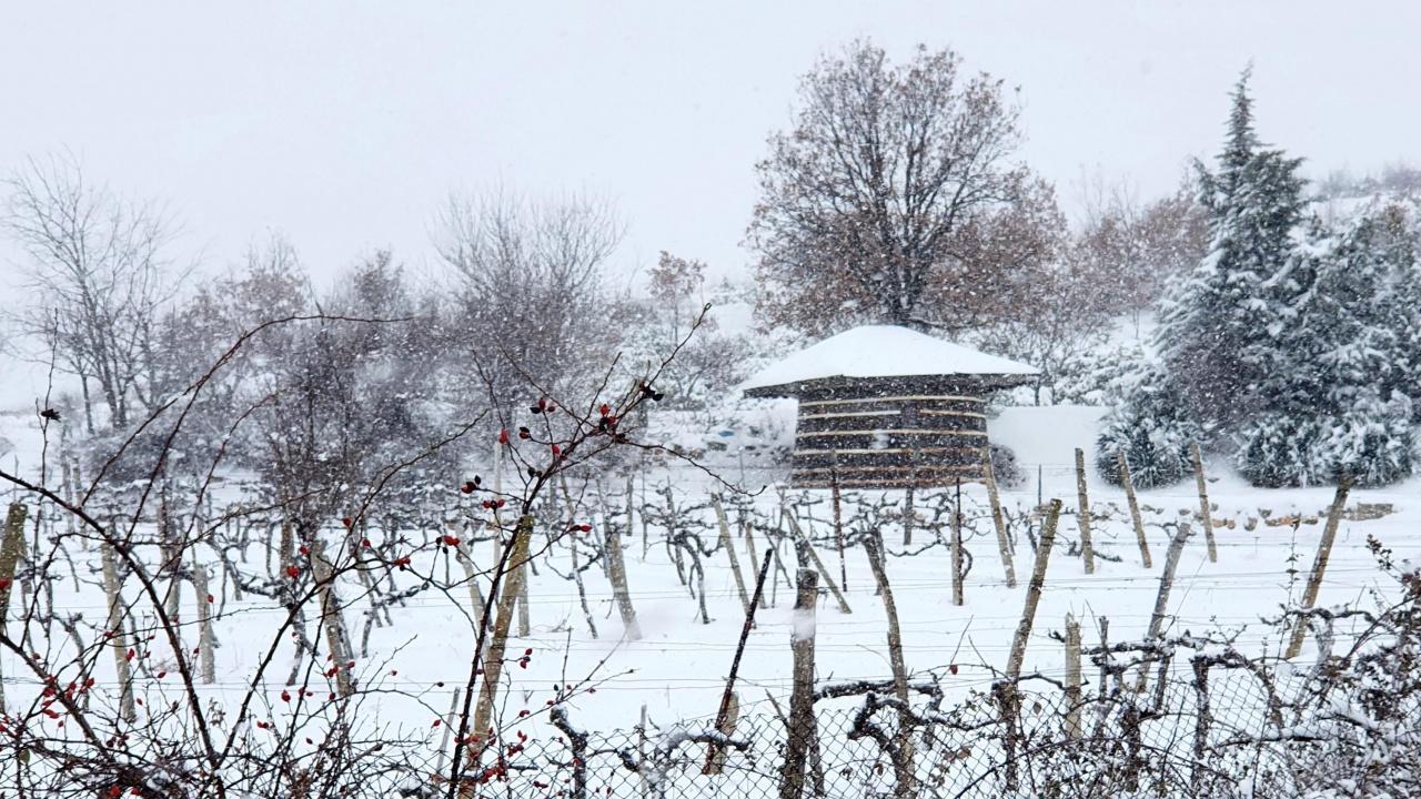 Жълт код за силен вятър и снеговалежи в области в страната