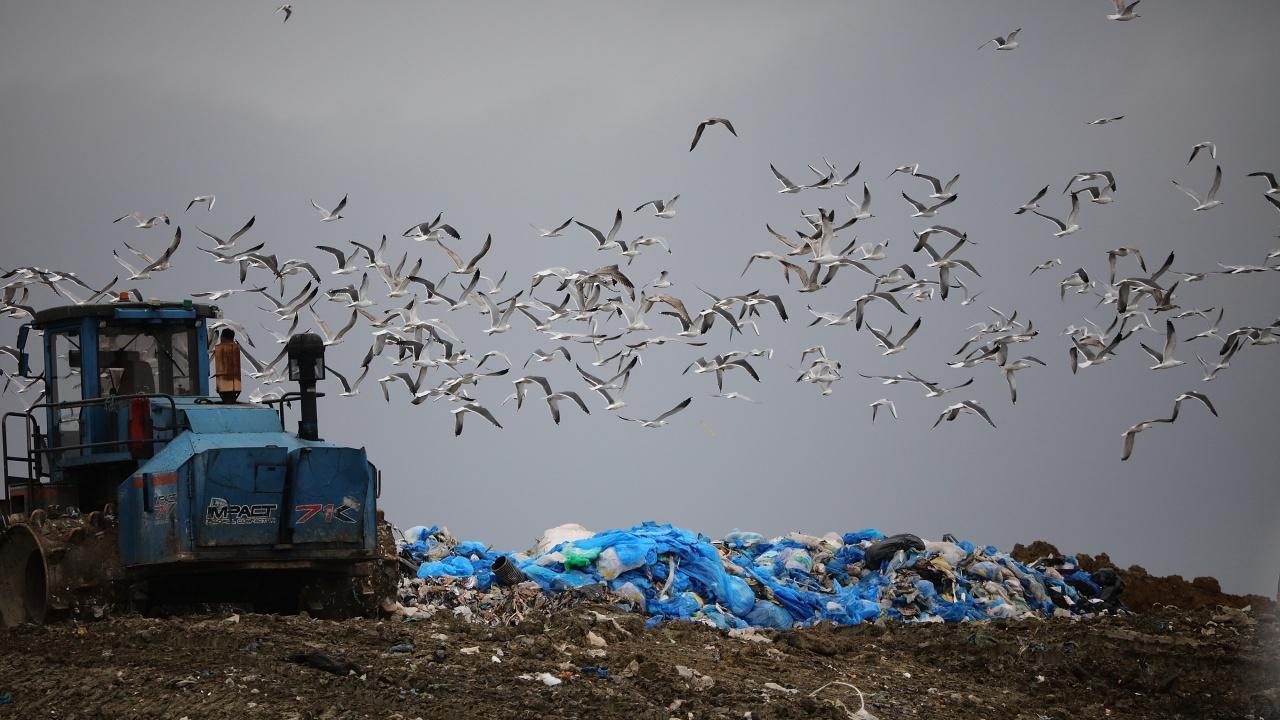 Екоинспекцията в Русе задължи общинските кметове да почистят замърсени с отпадъци терени